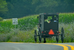 Buggy family (afagen) Tags: pennsylvania lancastercounty amishcountry groffdaleconferencemennonitechurch wengermennonite oldordermennonite mennonite horseandbuggy buggy