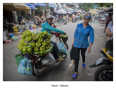 Where is the duck? (feroracles) Tags: hanói vietnam duck animales pato animals vietnamitas asia people gente mercado color motos fruta fruit