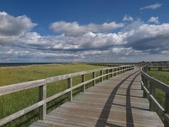 Landscape (Espykrelle) Tags: dunes nature bouctouche nb newbrunswick sky bridge landscape 7dwf walkway passerelle