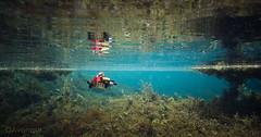 Below the Surface (Avanaut) Tags: lego legocity underwater diver lapland finland originality minifigure explorer toy toyphotography
