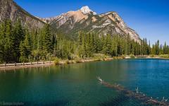Mt. Lorette Ponds 2 (kensparksphoto) Tags: mtloretteponds alberta canada kananaskiscountry pond lake canadianrockies rockies