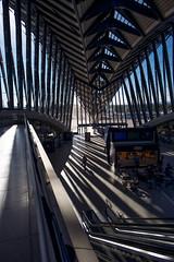 Gare TGV - Aeroport de Lyon Saint Exupery. (Gilles Daligand) Tags: lyon satolas garetgv train aeroport lyonsaintexupery ombres lumieres leica q bahnhof railwaystation architecture architecte santiagocalatrava
