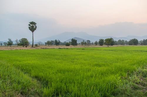 ramkhamhaeng national park - thailande 59