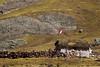 Perú (Jose Bascaran) Tags: machu picchu peru valle sagrado inka trail intipunku huiñay huayna maras moray salineras cholas train incarail