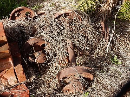 Bogeys in Weeds