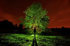 The Bremer shooting target (palateth) Tags: lightpainting lightart night nophotoshop singleexposure backlight bremershootingtarget fagnes malchamps tree