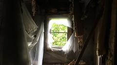 inside an abandoned house in cuyahoga falls, oh (winter-light) Tags: ohio cuyahogafalls light window house abandoned