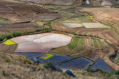 Patchwork (Keith - Glasgow) Tags: agriculture fields terracedfields landscapes madagascar travel farmland fianarantsoaprovince mg