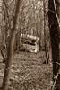 Fuite - 15 (baptiste.lasnier) Tags: série caravane sépia inspiration bois seul abandon urbex mystère peur angoisse arbres fenêtre contraste fuite vite partir