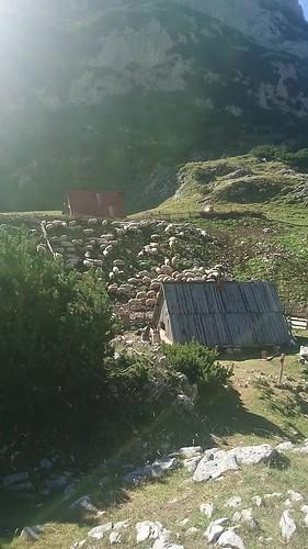 2017_08_Montenegro_015