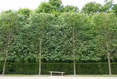 Bench along the cascade, Parc de Sceaux (Monceau) Tags: parcdesceaux france bench trees shaped orderly