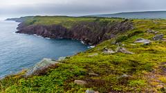cape spear coast3 (c4mtr0n1) Tags: water wasser ocean atlanticocean eastcoast capespear newfoundland parkscanada cliffs green blue cloudy