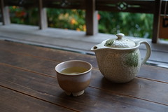 Tea and Cup (calvinyjj) Tags: sony mirrorless tokyo japan asia fun travel holidays tree nature green leaves colors woods outdoor summer relax serene city night people citizen landscape creek water trail garden