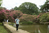 _DSC8202 (vhbin) Tags: 담양군 전라남도 대한민국 a99ii a99m2 명옥헌 담양출사지 담양 배롱나무 백일홍 꽃사진 연꽃 해바라기