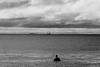 AY6A0255 (fcruse) Tags: cruse crusefoto 2017 surferslodgeopen surfsm surfing actionsport canon5dmarkiv surf wavesurfing höst toröstenstrand torö vågsurfing stockholm sweden se