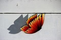 Street art Vinie Graffiti pap (Skeudenn Spered) Tags: street art vinie graffiti pap