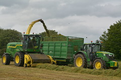 John Deere 7780i ProDrive filling a Broughan Engineering Trailer drawn by a John Deere 6155M Tractor (Shane Casey CK25) Tags: john deere 7780i prodrive filling broughan engineering trailer drawn 6155m tractor self propelled forage harvester jd green silage silage17 silage2017 grass grass17 grass2017 2017 17 winter fodder feed winterfodder cows cattle glenville county cork ireland irish contractor farm farmer farming agriculture agri work working land field hp pull horse power horsepower machinery machine nikon d7100 chopper ciągnik crops pulling tracteur traktori traktor trekker trator