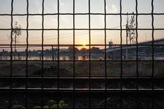 Evening- Belgrade (deblux) Tags: sunset serbia belgrade beograd bicycle grid train tracks