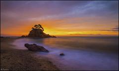 Contraluz (antoniocamero21) Tags: amanecer marina color foto sony playa caproig girona brava costa catalunya