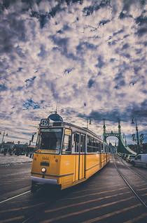 The tram No 49 in Liberty bridge