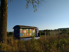 Mobile bee hive - Romania (ashabot) Tags: cool coolideas bees beehive mobilebeehive romania smart balkans