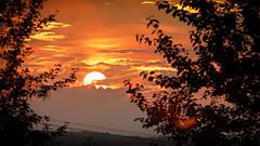 IMG_7287 (paul.wesson) Tags: 70d atlanticcanada canada canon cloudporn clouds eastcoast easternpassage explorecanada explorens igcanada igersnovascotia imagesofnovascotia novascotia ohcanada sunset trees visitnovascotia yhz ns