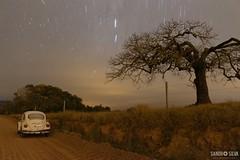 Noturnas (sandroturism) Tags: árvore noite noturnas estrelas canon t5i