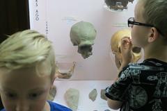 (andrew gallix) Tags: hornimanmuseum london frank alfie skulls