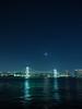 GFX06224 (Zengame) Tags: fujifilm fujinon gf gf3264mm gf3264mmf4 gf3264mmf4rlmwr gfx gfx50s toyosu toyosugururipark architecture bridge fuji illuminated illumination japan landmark lightup night rainbowbridge tokyo tokyobay フジ フジノン ライトアップ レインボーブリッジ 夜 富士 富士フイルム 日本 東京 東京湾 橋 豊洲 豊洲ぐるり公園 江東区 東京都 jp