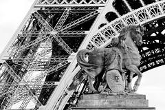 Tour Eiffel # 1 (just.Luc) Tags: toureiffel eiffeltoren eiffelturm eiffeltower paris parijs parigi bw bn zw nb metal metaal architecture architectuur europa europe escultura estatua sculpture statue statua beeld beeldhouwwerk monochrome monochroom monotone france frankrijk frankreich frança francia cheval paard pferd horse schild shield bouclier escudo