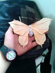 Butterfly - Javier Vivanco (javier vivanco origami) Tags: origami ica peru javier vivanco butterfly