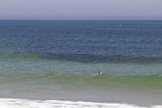 A Day at  Nauset Beach