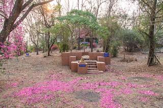 phrae - thailande 19