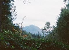 CNV00017 (SB_McAllister) Tags: fujica fujinon stx1 glencoe scotland filmisntdead lomography film 50mm