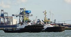 PETROJARL 1 Nieuwe Waterweg 20-8-2017 (kees torn) Tags: petrojarl1 fairplayxi fairplayx multratug31 multratug3 offshore fpso nieuwewaterweg hoekvanholland damenshiprepair europoort europahaven tug