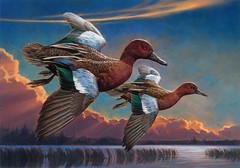 2017FDC117 (USFWS Headquarters) Tags: duck stamp federalduckstampcontest conservation art wildlife