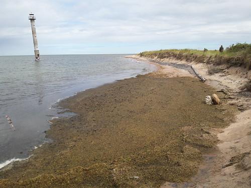 Kiipsaare majakas 2017