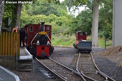 LM44 and Rusty, Stradbally, 7/8/17 (hurricanemk1c) Tags: railways railway train trains ireland industrialrailway narrowgauge stradbally stradballywoodlandsrailway 2017 lm44 bórdnamóna irishturfboard steamloco andrewbarclay clonsatworks ruston 4wd rusty rustonandhornsby esb portarlingtonworks 326052 listerhr6 electricitysupplyboard ruston48dl