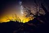 (Hugo Camara) Tags: madeiraisland madeira canoneos5dmarkiii irix15mmf24 indurotripod stars sky milky way hugocamara hugo