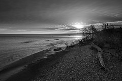 Morning Chill (Bert CR) Tags: sunrise georgianbay shoreline greatlakes bw blackandwhite blackwhite blackandwhitelandscape monochrome morningchill skancheli