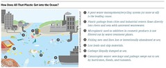 How Does All That Plastic Get into the Ocean? (boellstiftung) Tags: oceanatlas climatechange pollution sea ocean heinrichboellfoundation maritimeindustry shippingindustry overfishing ecosystem biodiversity