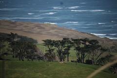 Rugged Coast (neil.bather@xtra.co.nz) Tags: coast coastline sea seascape manukau heads franklin auckland new zealand farm landscape