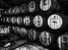 2016 (vedebe) Tags: noiretblanc netb nb bw monochrome caves cave vin vinicole provence poselongue