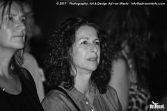 2017 Bosuil-Het publiek bij Back To Back en The Lachy Doley Group 17-ZW