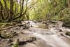 The River Boyd, Golden Valley nature reserve, Wick (Tim Graham Photography) Tags: d610 wick bristol naturereserve 1424 longexposure nikon water river naturallight goldenvalley nikkor