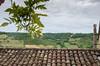 IMGP0738 (fLobOOk) Tags: cordes sur ciel cordessurciel aveyron tarn village médiéval histoire chien chat france europe garonne tarnetgaronne