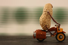 Fast food (fotospoekes) Tags: nuss erdnuss peanut roller motorrad schnell fast food tabletop still fotospoekes wortspiel wörtlich fun spas humour lustig figur