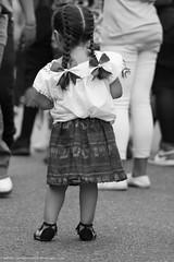 Fiestas Patrias 2017-6862 (gabrielaquintana1) Tags: fiestaspatrias dancinshorses lowriders mariachis motorcycles parade