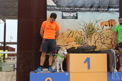 "Entrega de premios de la 5ª Can-rrera Popular de Valencia 2017 • <a style=""font-size:0.8em;"" href=""http://www.flickr.com/photos/145784091@N07/37396818482/"" target=""_blank"">View on Flickr</a>"