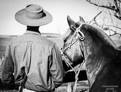 """""""Enchendo os olhos de campo"""" (Suzana Fernandes Fotografia) Tags: campo cavalo campeiro rio grande do sul tupanciretã gaúcho horse caballo cowboy campanha rural natureza chapéu amizade tradição"""